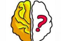 buat persamaan menjadi benar brain out